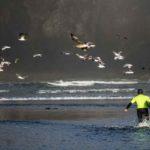 Agate-Beach-Classic-Slider-Web-1